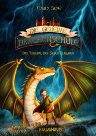 Buchcover Die geheime Drachenschule - Das Tribunal der Sieben Flammen Emily Skye