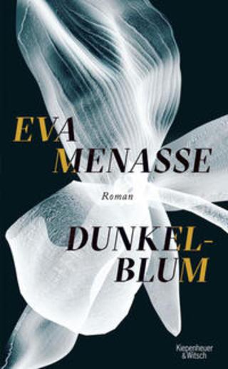 Buchcover Dunkelblum Eva Menasse